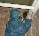 asbestos management surveys